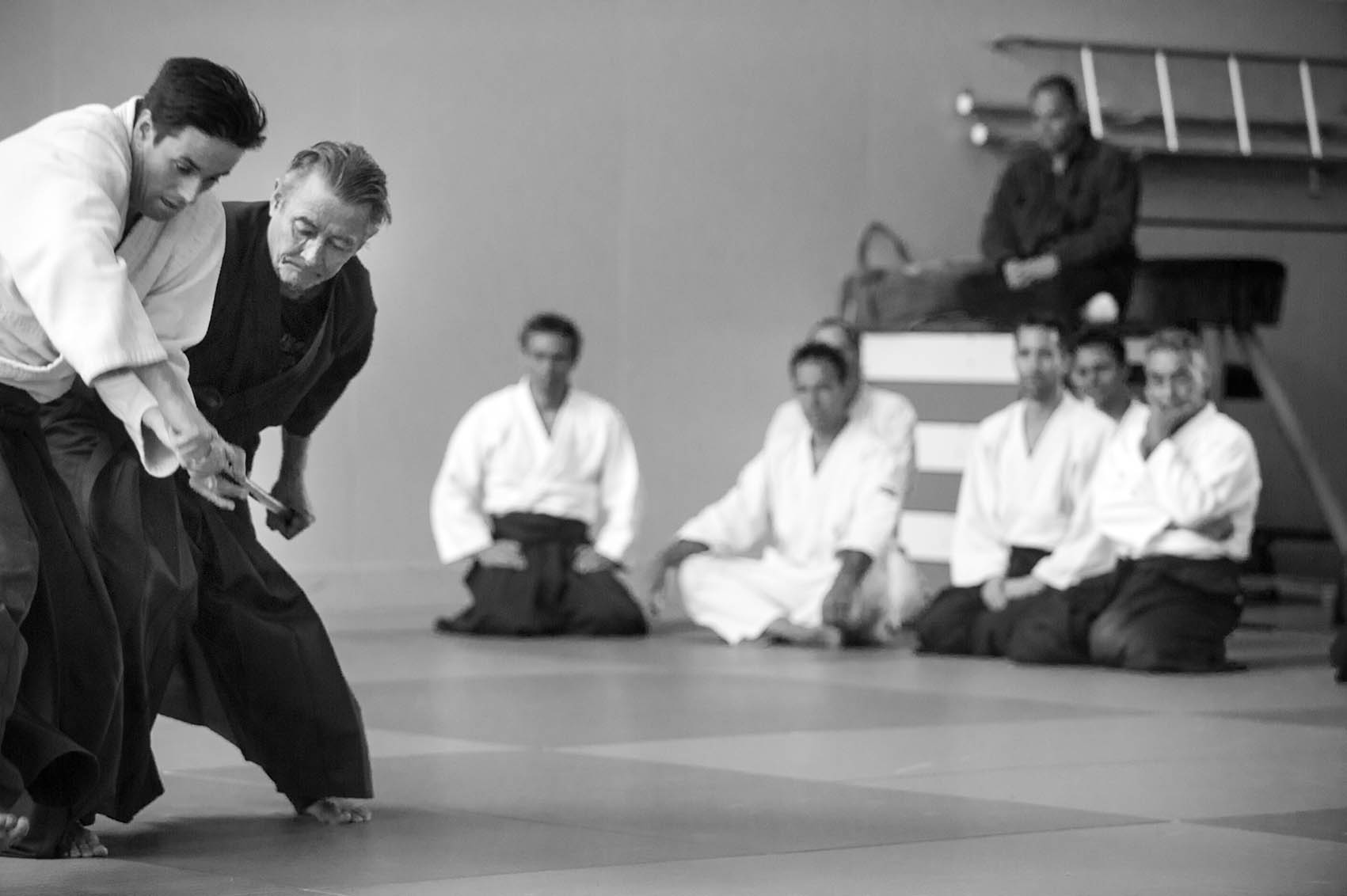 Aikido Stages/Agenda