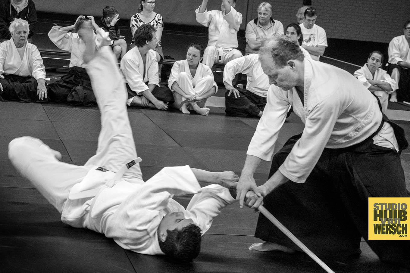 Aikido &  Katori Shinto Ryu